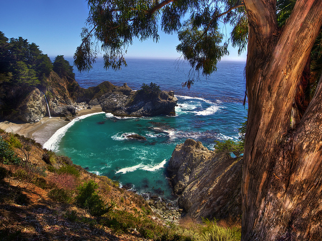 Travel Blogs: McWay Falls Big Sur California
